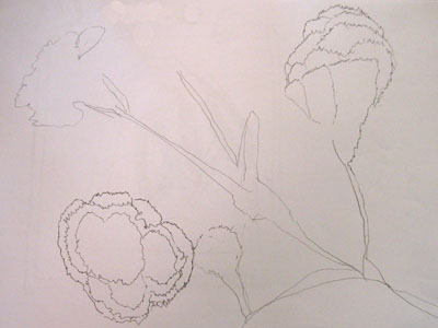 A still life drawing by one of the participants at the workshop.